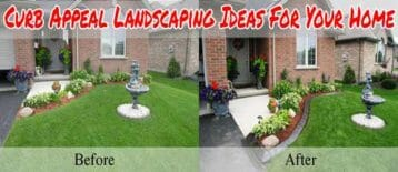 Curb Appeal Landscaping Ideas For Your Home